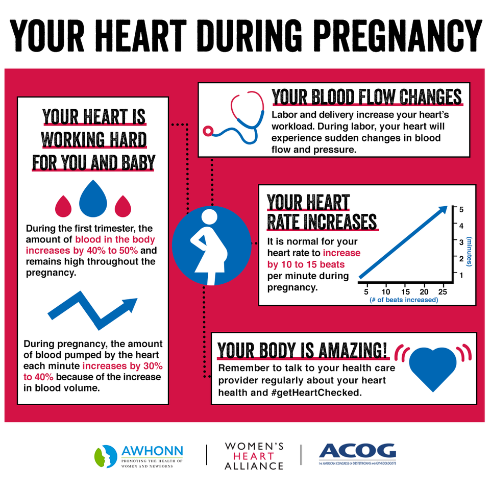 Your Heart During Pregnancy - Women's Heart Alliance